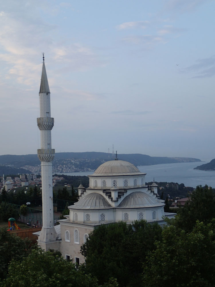View of a mosque and the Bosporus Straights from our room