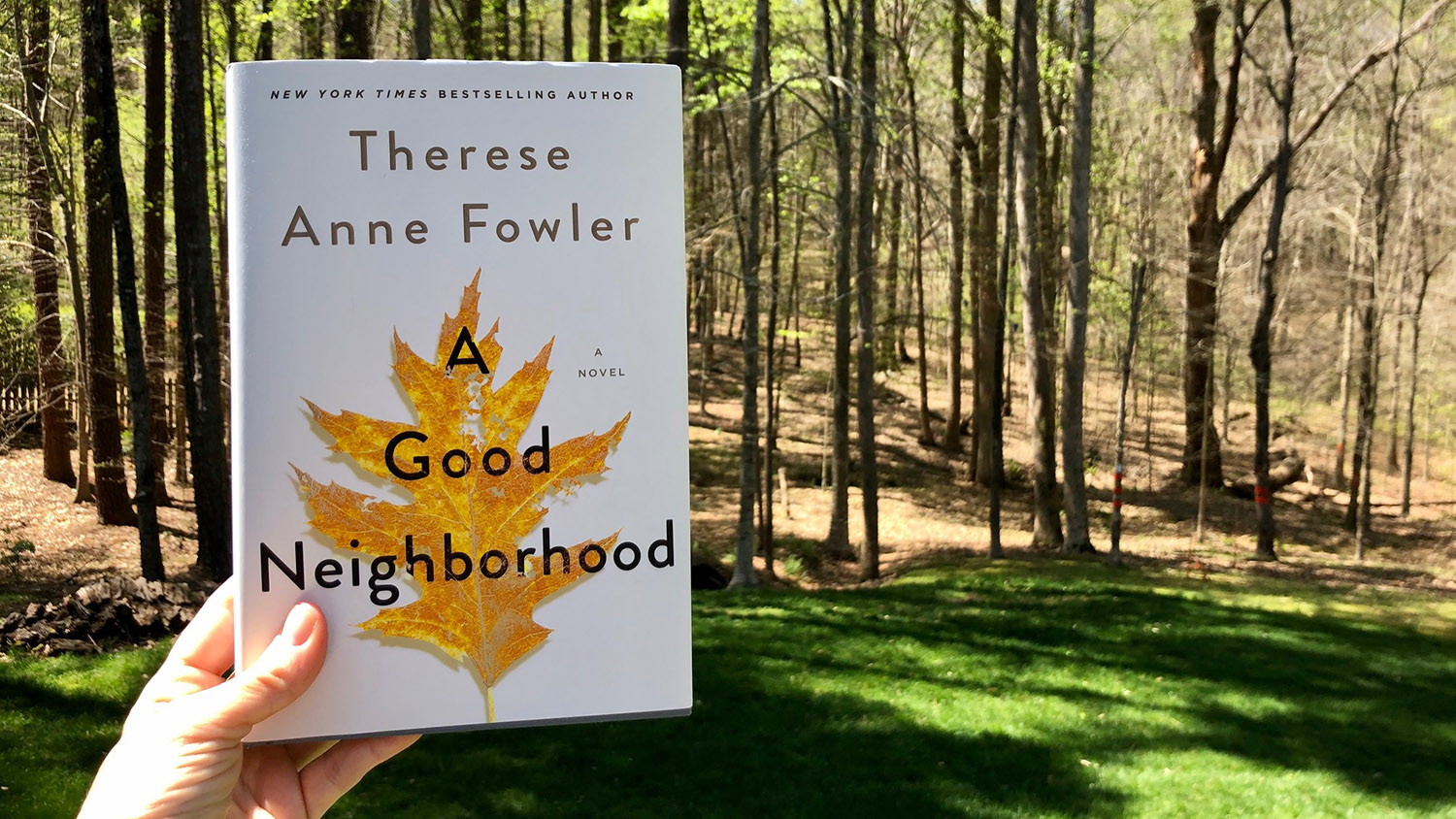 "cover of ""A Good Neighborhood"""