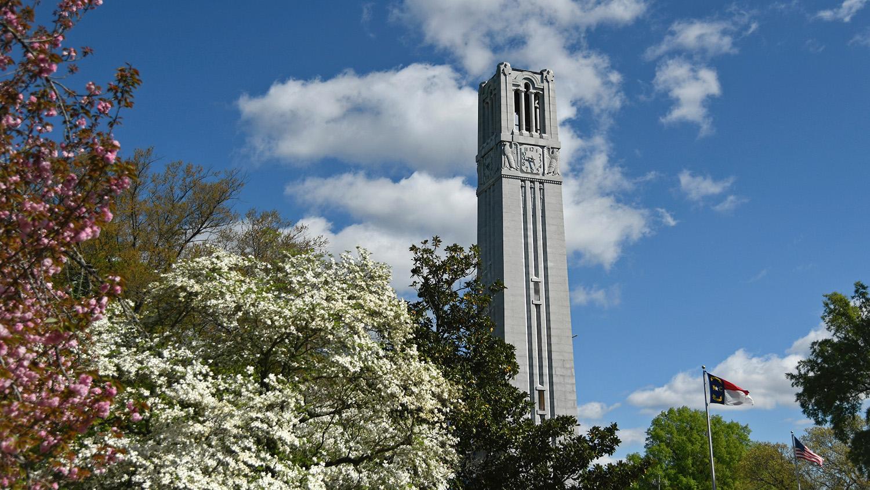 belltower stands behind trees