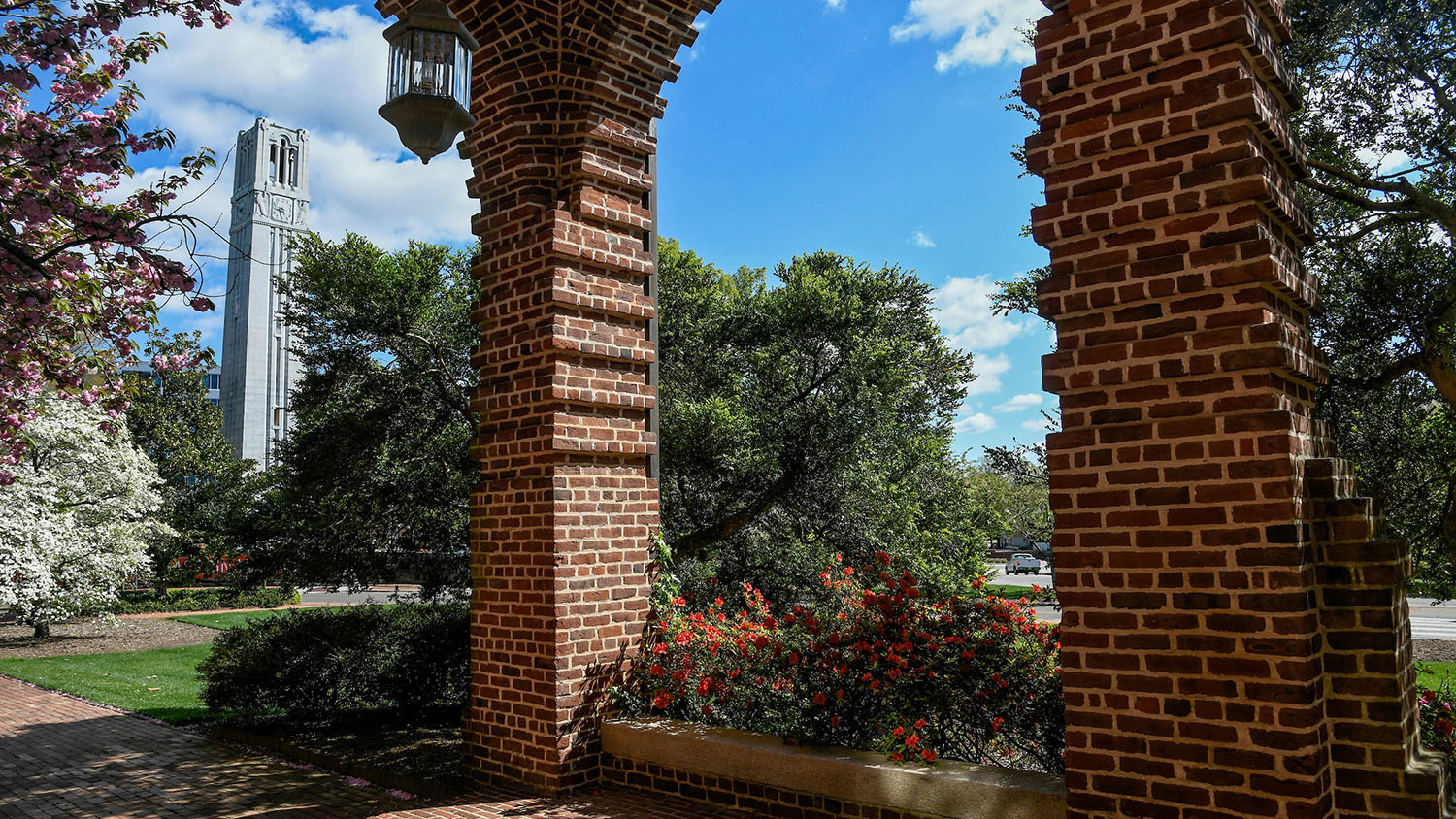 belltower framed by the arches of Holladay Hall