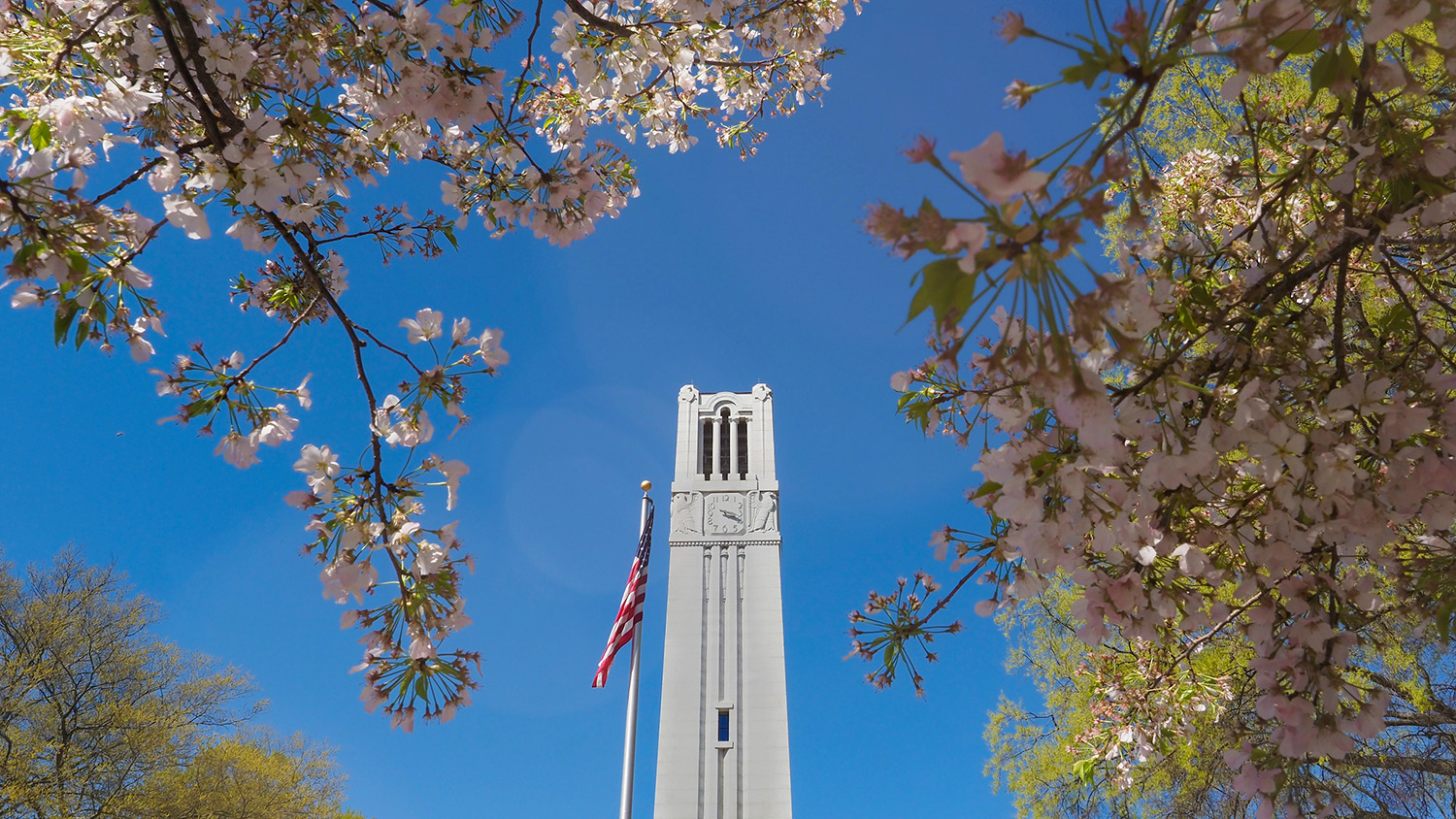 belltower surrounded by blooming flowers