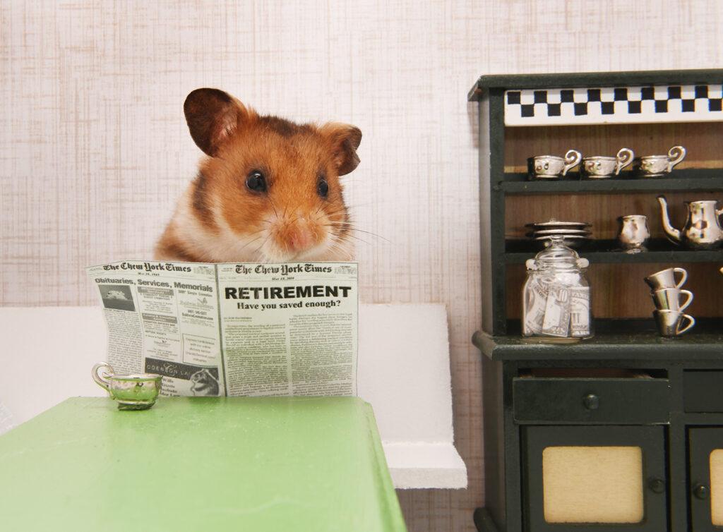 hamster reading newspaper