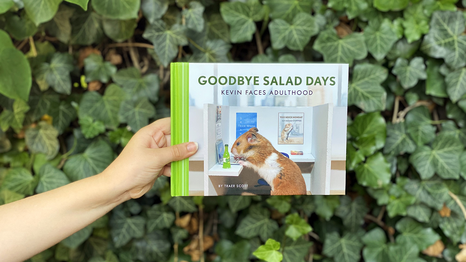 """cover of """"Goodbye Salad Days"""""""